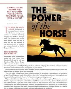 the-power-of-the-horse